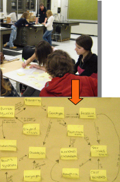 Students create concept maps during a unit on genetics