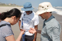 Dr. Min Liu learns about North Carolina beach sands from regional teachers