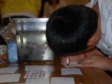 Visitor to Lawrence Hall of Science engages in a crayfish inquiry