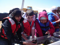 High school apprentices from the SCSA program evaluating benthic organisms