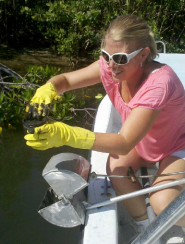 Jackie Zakarian collects samples from Indian River Lagoon
