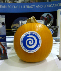 Pumpkin with COSEE logo