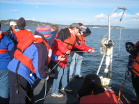 OIP cruise participants casting nets, to 70 meters deep, for zooplankton in Puget Sound