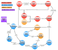 The COSEE-OS Concept Map Builder