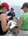 Teachers collect water quality data during a workshop