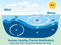 Thermal stratification in the Great Lakes