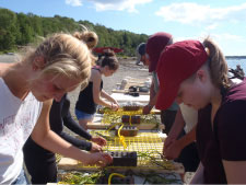 Teachers and students making grids for eelgrass restoration