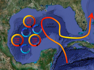 Image showing cartoon of Loop Current as curving arrow moving through Gulf of Mexico, with eddies and gyres breaking off and remaining in Gulf.